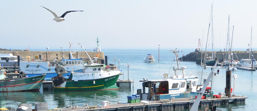 """Résultat de recherche d'images pour """"port de pêche noirmoutiers"""""""